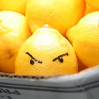 bad_lemon1